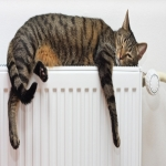 Heating Engineer Services in Ameysford 9